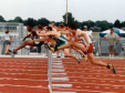 hurdle_website